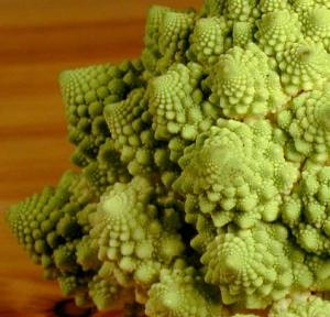 broccoflower-fractal